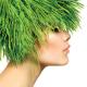 Green-hair-newsletter