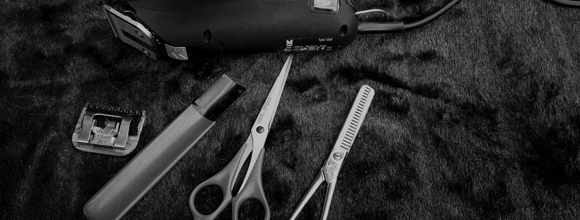 gestion stock peluqueria shortcuts